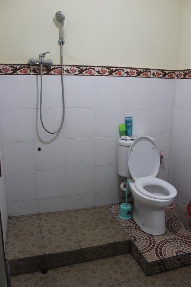 Bali- I showered and peed here