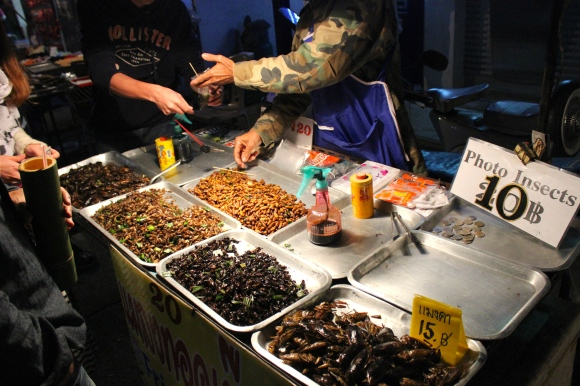 Thailand- I ate fried bugs